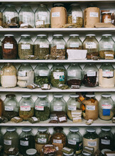 Shelves Full Of Herbal Medicines And Remedies