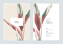Foliage Wedding Invitation Card Template Design, Ctenanthe Oppenheimiana On Bright Brown And White