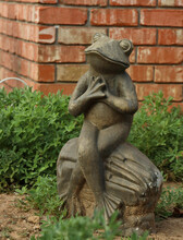 Stone Frog In The Garden
