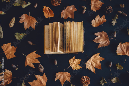 Valokuvatapetti Vintage book and autumn maple leaves on dark background from above