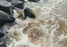 Foamy, Bubbling, Large Sea Wav...