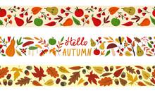 Set Of Seamless Autumn Fall Bo...