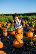 Asian Kid Stacking Pumpkins In...