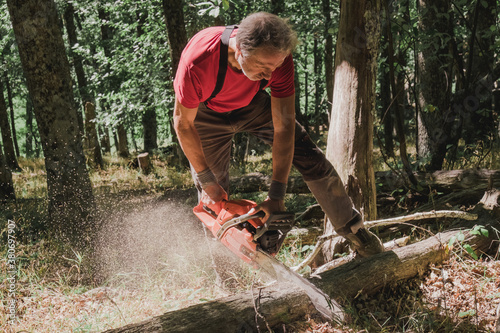 Man cutting wood with a chainsaw - 380697907
