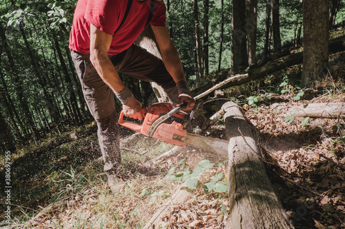 Man cutting wood with a chainsaw - 380697955