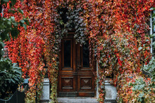 Door Full Of Autumn Leaves