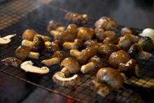 Fresh Wild Mushrooms, Grilled ...