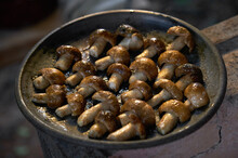 Fresh Wild Mushrooms, Grilled On Charcoal Fire. On An Outdoor Picnic Party