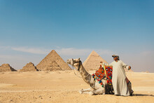 Camel Driver With Camel In Fro...