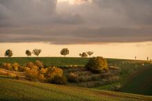 South Moravia At Sunset