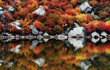 Beautiful Autumn Trees And Sto...