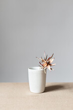 Vase With Dried Flower