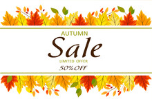 Autumn Sale Up To 50%, Limited...