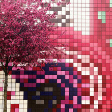 Pixelation In Pink