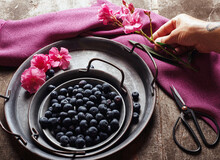 From Above Crop Hand Holding Pink Flower Near Blueberries In Metal Bowl