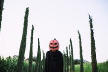 Child Wearing Jack O Lantern Standing On Road During Halloween Celebration