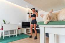 Sleeping Cat Near Female Athlete Watching Online Video On Laptop And Doing Exercises With Dumbbells During Training At Home