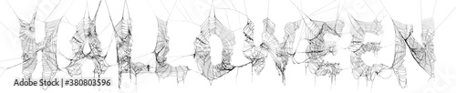 Photo Collage of real spider webs to make highly detailed Halloween text on white