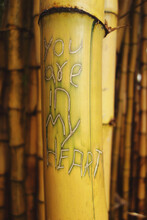 "You Are In My Heart"""" Text Carved In Bamboo"