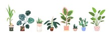 Home Plants In Flowerpot. Houseplants Isolated. Set Collection. Trendy Hugge Style, Urban Jungle Decor. Hand Drawn. Green, Blue, Pink, Brown, Beige, White Colors. Print, Poster, Banner. Logo, Label.