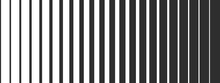 Black And White Monochrome Str...