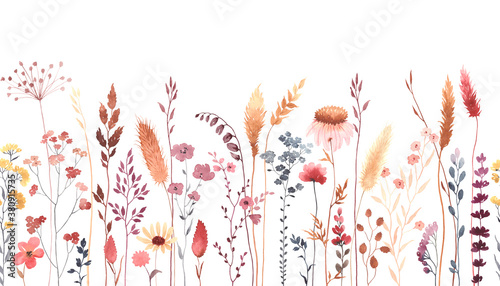 Fototapeta Watercolor floral seamless pattern with colorful wildflowers, plants and grass. Panoramic horizontal border, isolated illustration. Meadow in vintage style. obraz