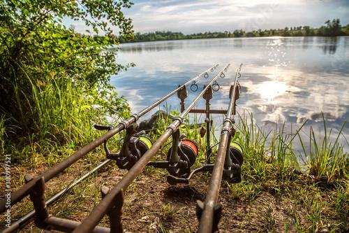 Cuadros en Lienzo Carpfishing session at the Lake