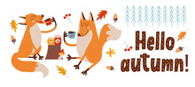 Hello, Autumn. Cute Foxes Drin...
