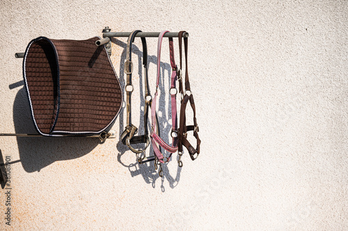 Fototapeta Equestrian equipment hanging on a white wall.