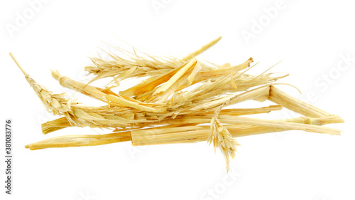 Heap of golden, yellow straw isolated on white background Canvas Print