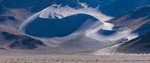 Sand Dunes, Campos De Piedra P...