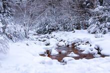 雪の積もった山の中を...