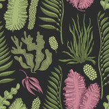 Seaweed seamless pattern. Hand drawn vector seaweeds color illustration. Engraved style sea food banner. Retro sea plants background - 381115569