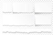 Torn Paper Strips. Ripped Paper Edges, Broken White Cardboard