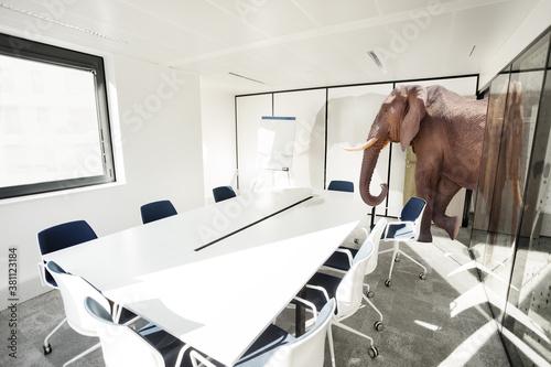 canvas print motiv - Sergey Novikov : Huge big elephant entering the office meeting room - business negotiation concept