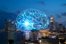 Human Brain Hologram, Aerial P...