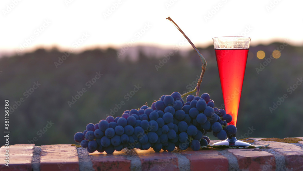glasses of red wine with black grapes on the sunset