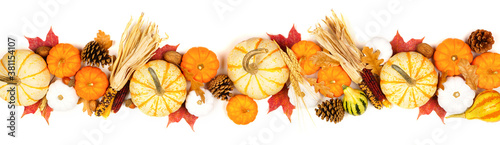 Fototapeta Autumn border of assorted pumpkins, gourds, leaves and corn. Top view isolated on a white background. obraz