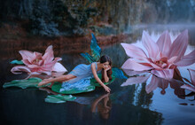 A Beautiful Woman A Little Cute Fairy With Butterfly Wings Lies On Green Water Lily Leaf. Fantasy Scenery Of Huge Pink Flowers On The Lake. River Nymph, Girl Pixie In An Blue Dress Girl Touching Water