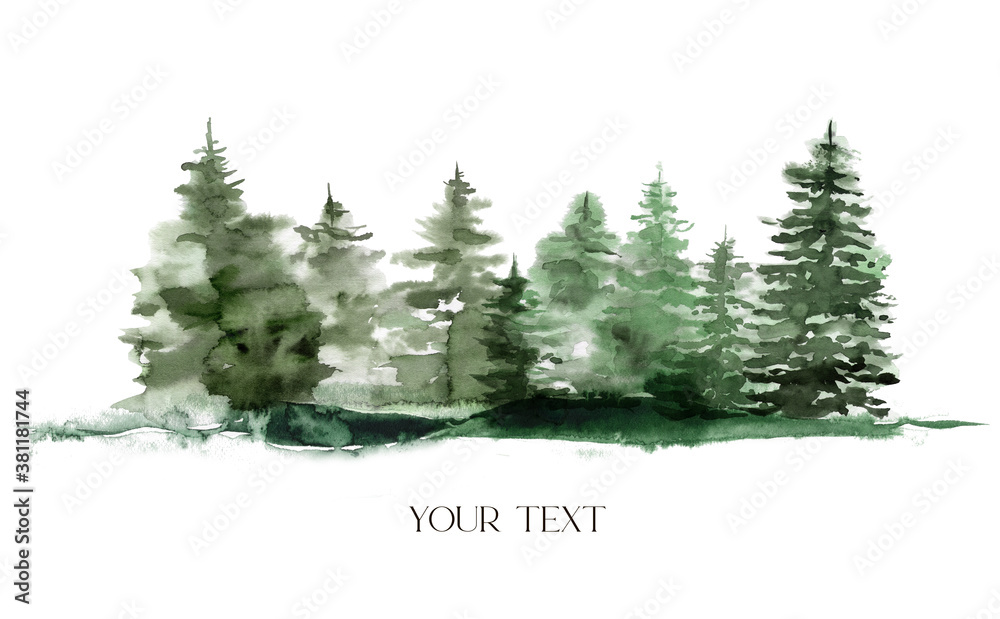 Fototapeta Watercolor winter foggy evergreen forest. Hand painted fir trees illustration isolated on white background. Holiday clip art for design, print, fabric or background. Christmas card.