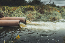 Sewage Pipes Pollute The Water...