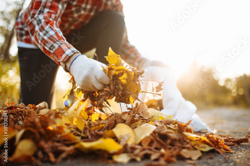 Fotografía Male volunteer grabs a pile of fallen leaves and puts them into a garbage bag in the park