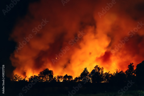 Fototapeta Forest fire at night, wildfire after dry summer season, burning nature in Russia, Voronezh Region. obraz