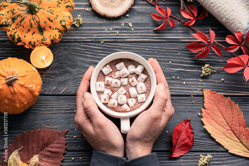 Obraz Female hands holding hot drink cocoa cup with marshmallow on autumn fall holiday cozy background pumpkin, orange leaves on brown wooden table, happy halloween thanksgiving decoration, above top view.  - fototapety do salonu