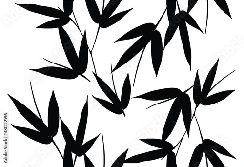 Photo Bamboo leaves, isolated on background, Black and white bamboo leaves