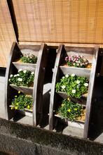 花と木製プランター