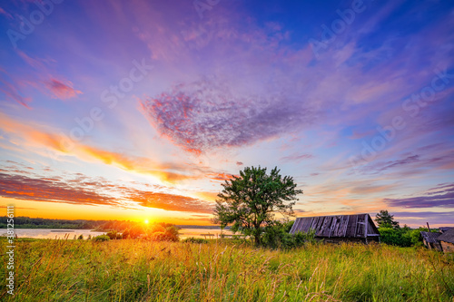 Fotomural Old wooden hut and lonely tree at sunset in countryside at spring