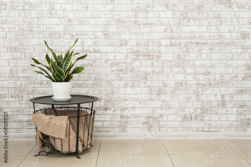 Fototapeta Green houseplant on table near brick wall in room obraz