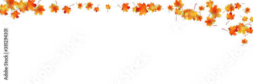 Fototapeta Autumn vector seamless background obraz na płótnie