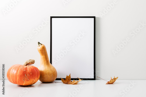 Autumn minimal composition. Thanksgiving holiday concept. Photo frame, pumpkin on white background. Front view, copy space